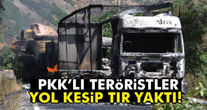 PKK, Çat-Karlıova yolunda 3 TIR'ı ateşe