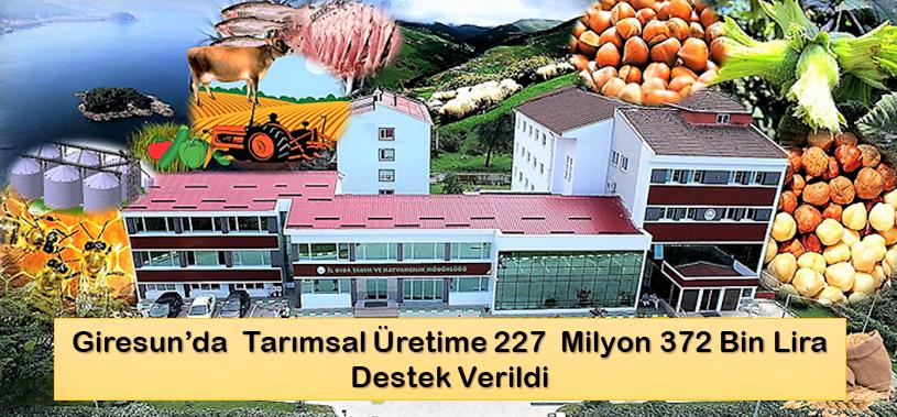 Giresun'da  Tarımsal Üretime 227  Milyon 372 Bin Lira Destek Verildi
