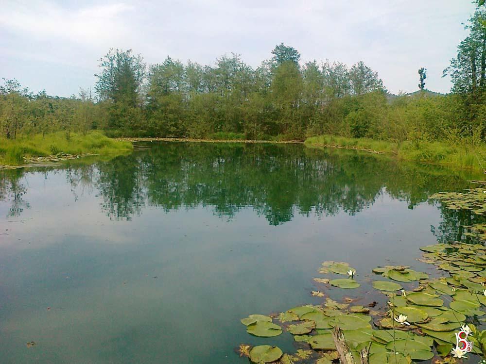 Kuşluhan Köyü Ördek Gölünün
