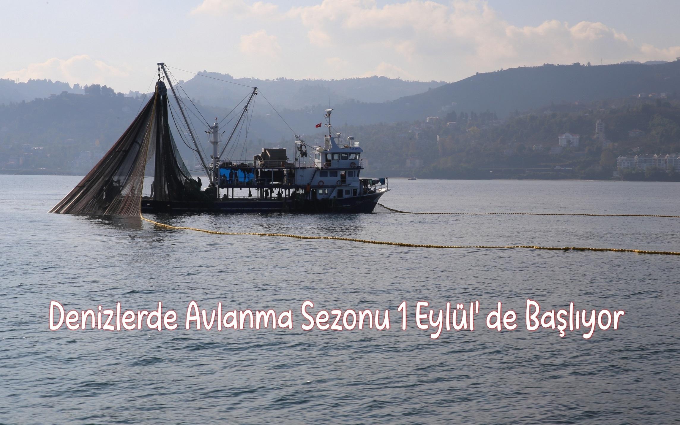 Denizlerde Avlanma Sezonu 1 Eylül' de Başlıyor
