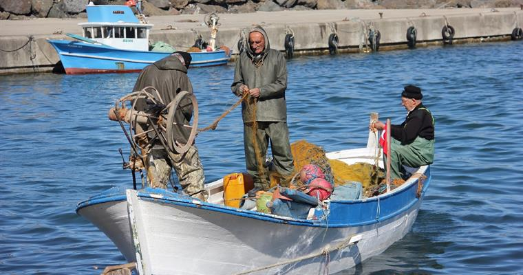 Geleneksel Kıyı Balıkçılığı Destekleme Başvuruları Başlamıştır
