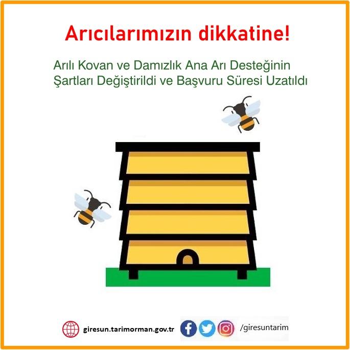 Ana Arı Desteğinin Şartları Değiştirildi ve Başvuru Süresi Uzatıldı