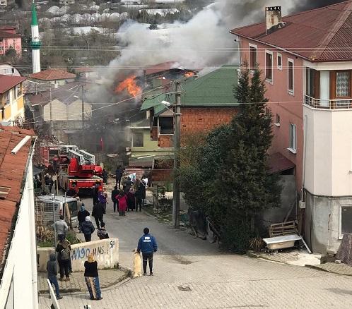Yalova'da yangın korkuttu