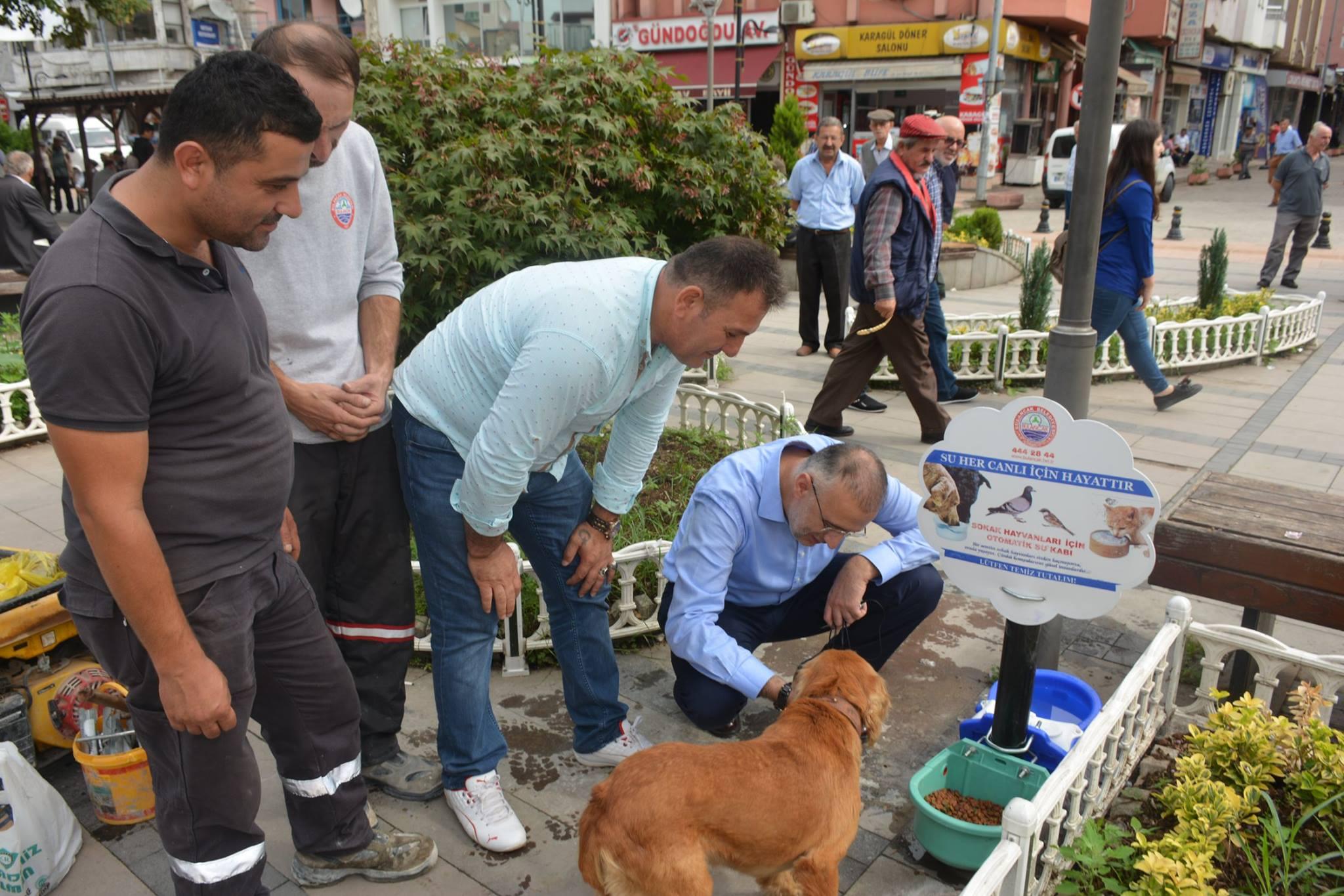"""Başkan Yakar; """"Hayvanları sevmek kadar, onları korumakta önemli"""""""