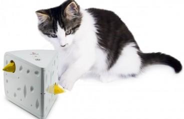 Kedi ve Köpek Sahiplerinin Tüm İhtiyaçları Petzimo.com'da