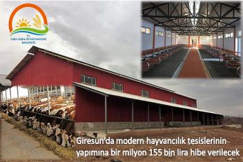 Modern hayvancılık tesislerinin yapımına hibe