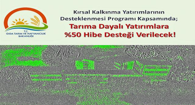 Tarıma Dayalı Yatırımlara%50 Hibe Desteği