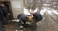 Kış Mevsimi Hayvan Sağlığı Saha Çalışmalarına Engel